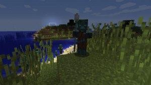 我的世界水鬼是什么?我的世界Drowned(溺尸)介绍图片3