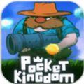 口袋王国游戏