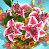 花之领域手机游戏官方版下载 v1.0