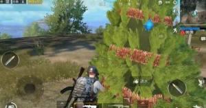 刺激战场网红小树位置在哪找?6棵网红圣诞树位置大全图片1