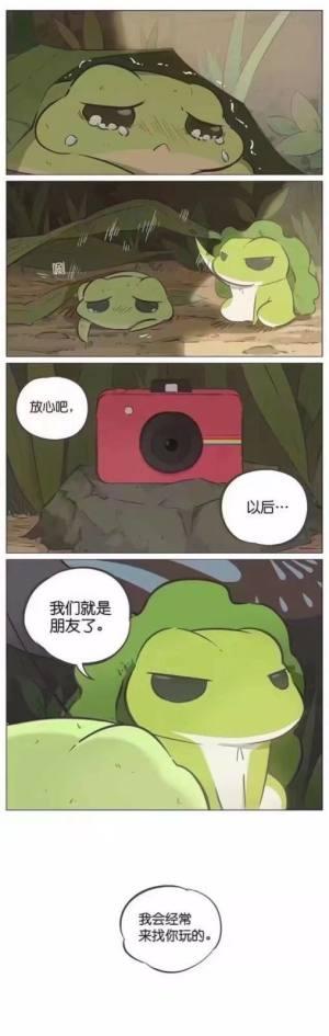旅行青蛙照片的含义,99%的人都不知道照片背后的故事图片6
