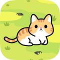 收养一只流浪的猫游戏