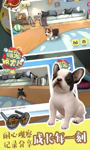 萌宠大人VR游戏安卓官方版游戏下载图3: