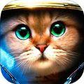 装甲猫咪游戏