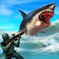 鯊魚狩獵游戲