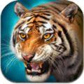 虎王模拟器官方版