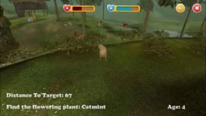 动物混合模拟器手机版图1