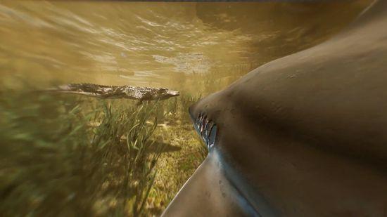 食人鲨Man Eater手机游戏中文版地址下载图4: