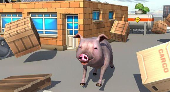 Bed Piggies去广告汉化修改版下载图3: