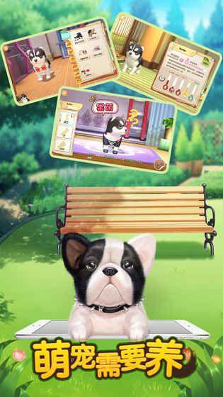 萌宠需要养官方正式版版游戏下载地址图2:
