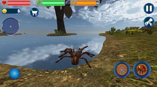 昆虫蜘蛛模拟器安卓官方版游戏下载图3: