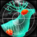 猎人与射手3D游戏