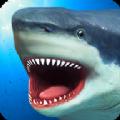 鲨鱼模拟器战斗游戏