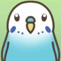 蹒跚学步小鹦鹉游戏