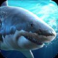 真实模拟鲨鱼捕食官方网战