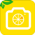柠檬水印相机APP