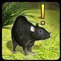 萌鼠模拟器手机版