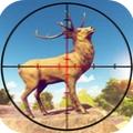 野生动物狩猎3D破解版