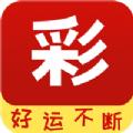 香港免费资料+王中王最新版