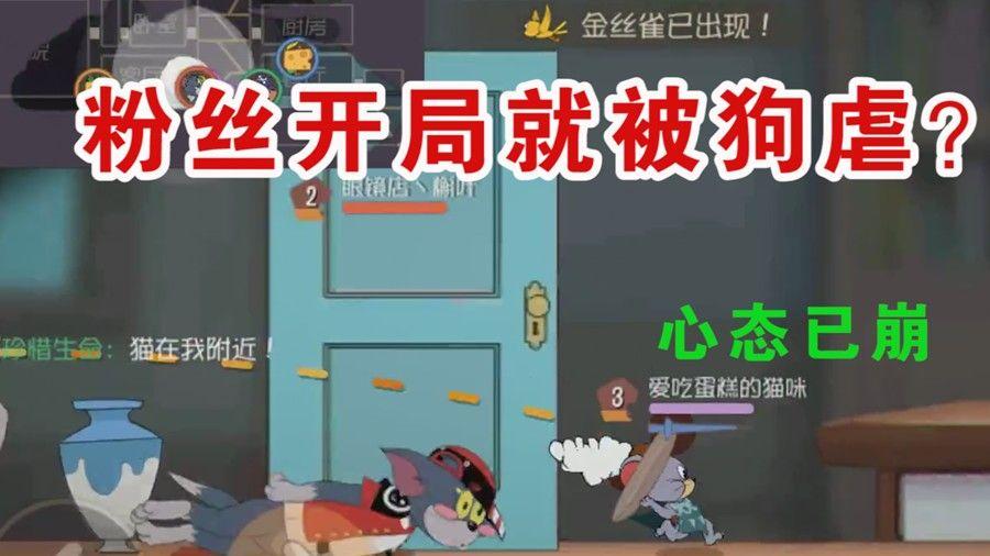 猫和老鼠:偶遇粉丝本以为会和平相处!却没想到被虐这么惨?有趣[视频][多图]图片1