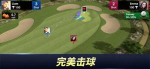 高尔夫之王世界巡回赛破解版图4