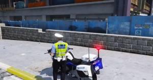 gta5警察模拟器游戏图1