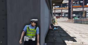 gta5警察模拟器游戏图4