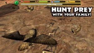 终极猫头鹰模拟器破解版图2
