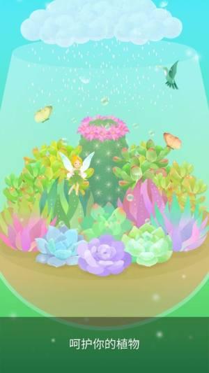我的水晶花园1.91破解版图1