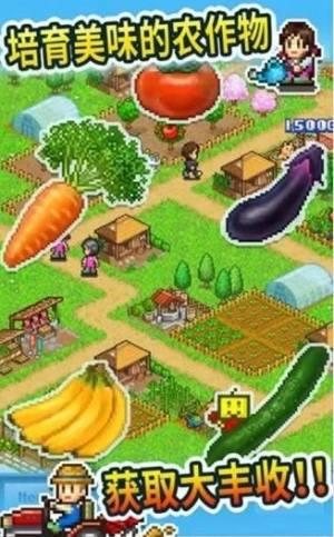 农场大富豪挣钱版图3