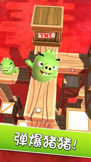 愤怒的小鸟探索猪岛破解版图3