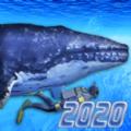 Diving Simulator 2020中文版