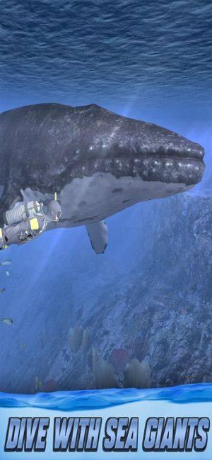 Diving Simulator 2020游戏安卓版下载图片3