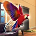 鹦鹉模拟器宠物世界3D游戏中文版官网下载