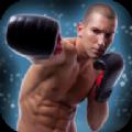 跆拳道明星游戏中文手机版 v1.7.0