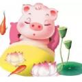 福禄猪红包版