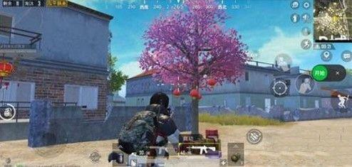 和平精英烟花树在哪找?烟花树位置及玩法一览[视频][多图]图片1