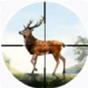 猎鹿人之密林探险小游戏