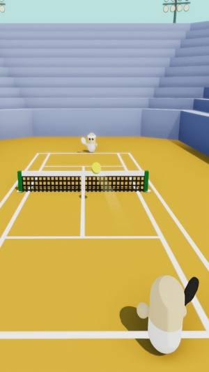 小网球安卓版图3