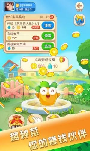 金猪游戏盒子红包版图3