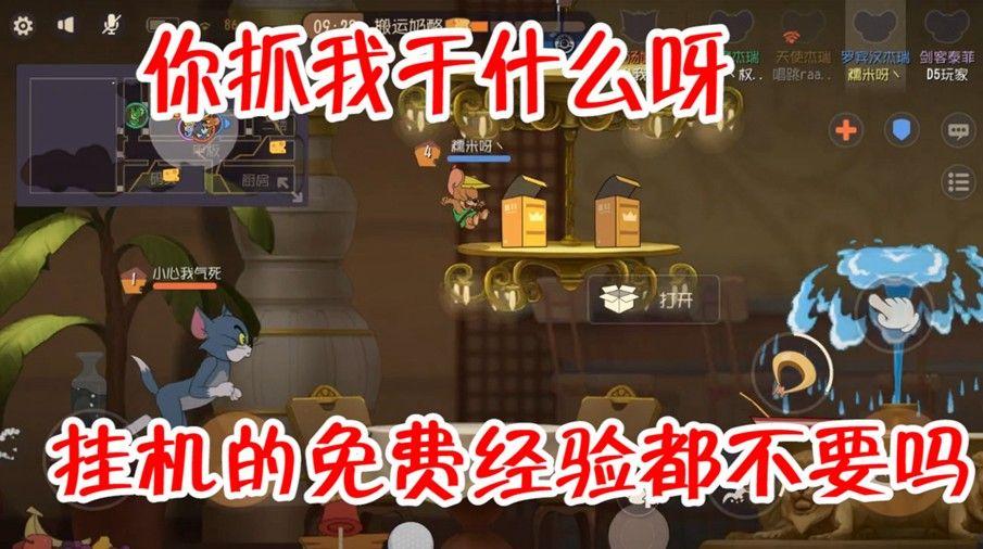猫和老鼠:挂机也要选个好地方,天使挂机结果躺赢,这地方真好?[视频][多图]图片1