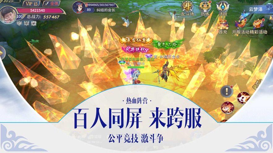 灵域天下正版手游官方下载图片3