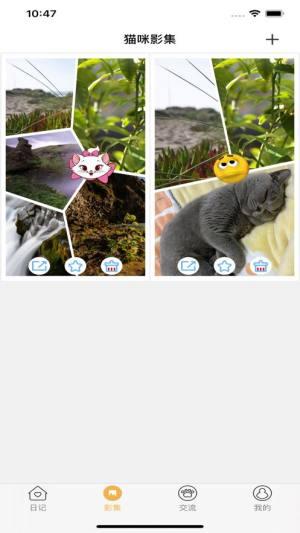 宠猫日记APP图3