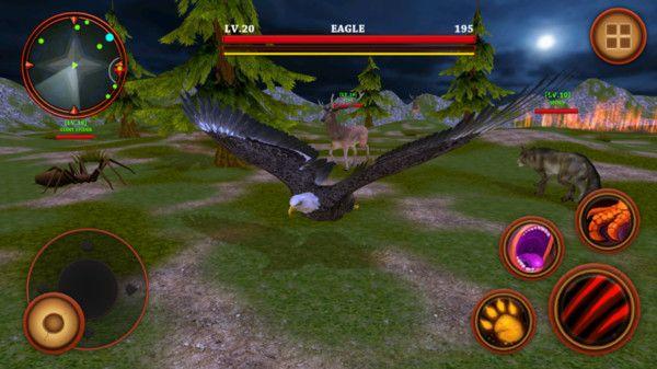 野鹰生存模拟器中文破解版下载图片3