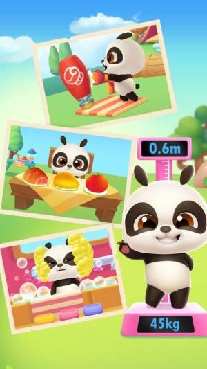 我的熊猫盼盼安卓版图1