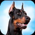 杜宾狗模拟器中文版