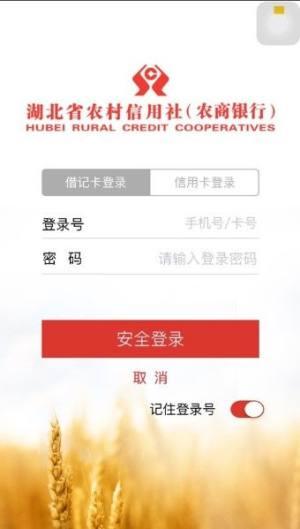 湖北农信手机银行APP官网最新版下载图片1