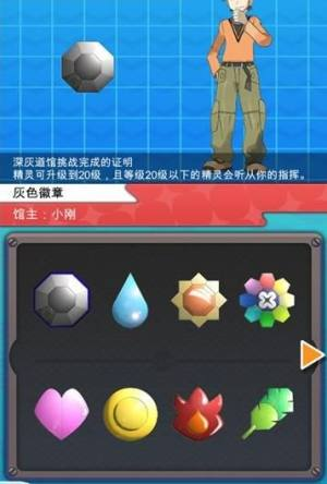 PokePlus iOS中文版图2