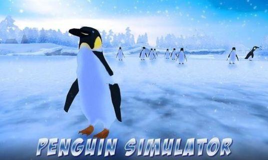 企鹅家庭模拟器南极探险游戏官方网站下载安卓版图4: