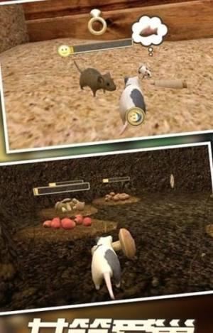 真实老鼠模拟器中文版图1